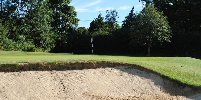11th Hole Par 3 Whitehill Golf Course